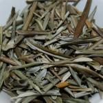 chá de oliveira para emagrecer