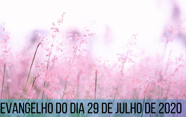 Evangelho-do-dia-29-de-julho-de-2020
