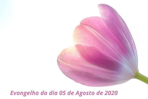 Evangelho-do-dia-05-de-Agosto-de-2020